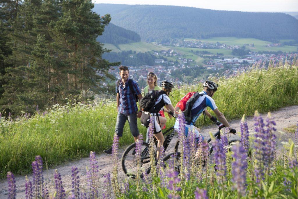 Biken in Baiersbronn