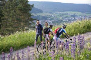 Baiersbike