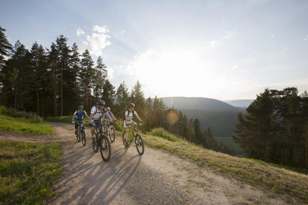 Biken in Baiersbronn und Umgebung