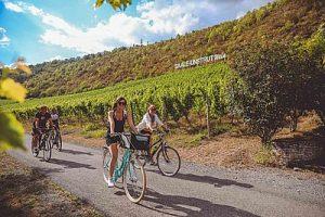 Etappe_6_Auf_dem_Saaleradweg_durchs_Saale-Unstrut-Weinanbau-Gebiet__c_Vincent_Graetsch (002)