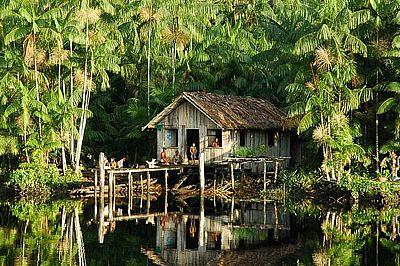 Waldschutzprojekt Brasilien (002)